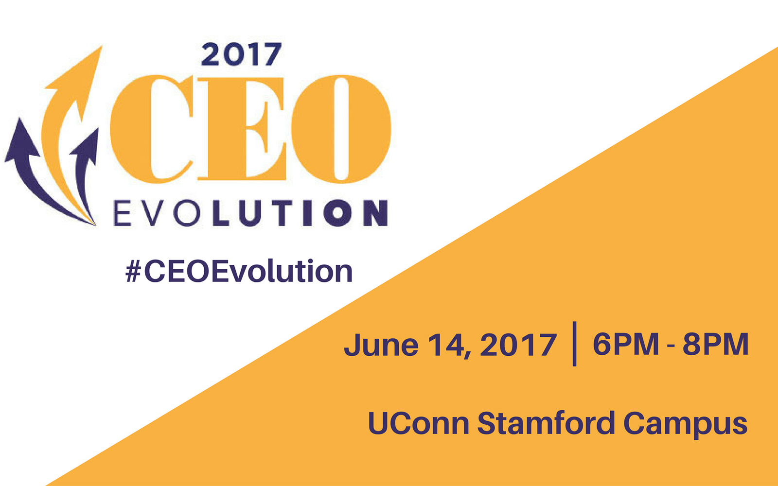 CEO Evolution 2017