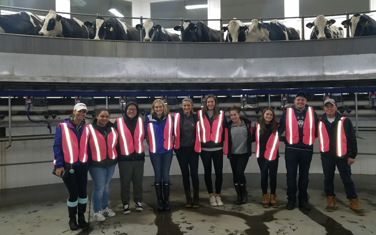 Marketing students at the Oakridge Dairy Farm in Ellington, Conn. (Seth Bahler/Oakridge Dairy)